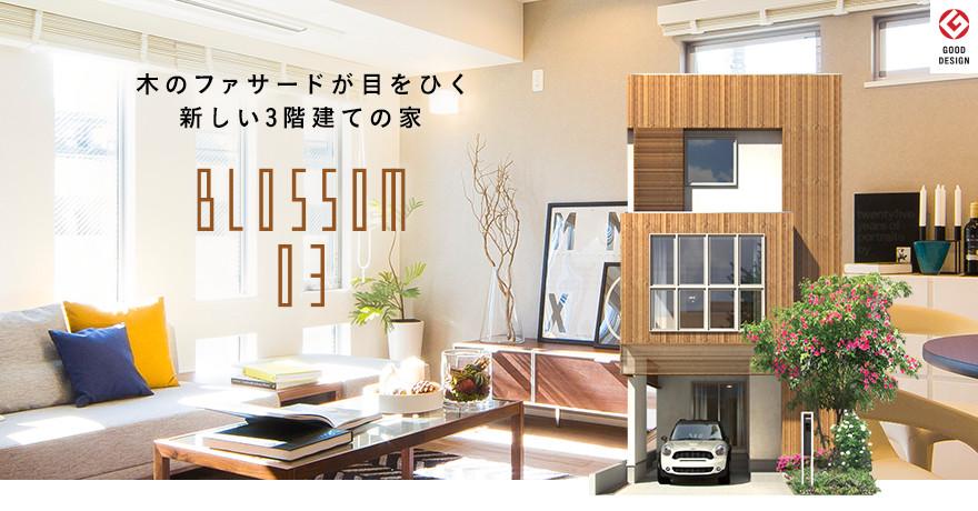 BLOSSOM03