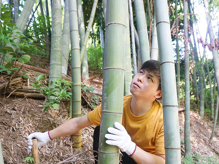 良い竹を吟味する渡邉。