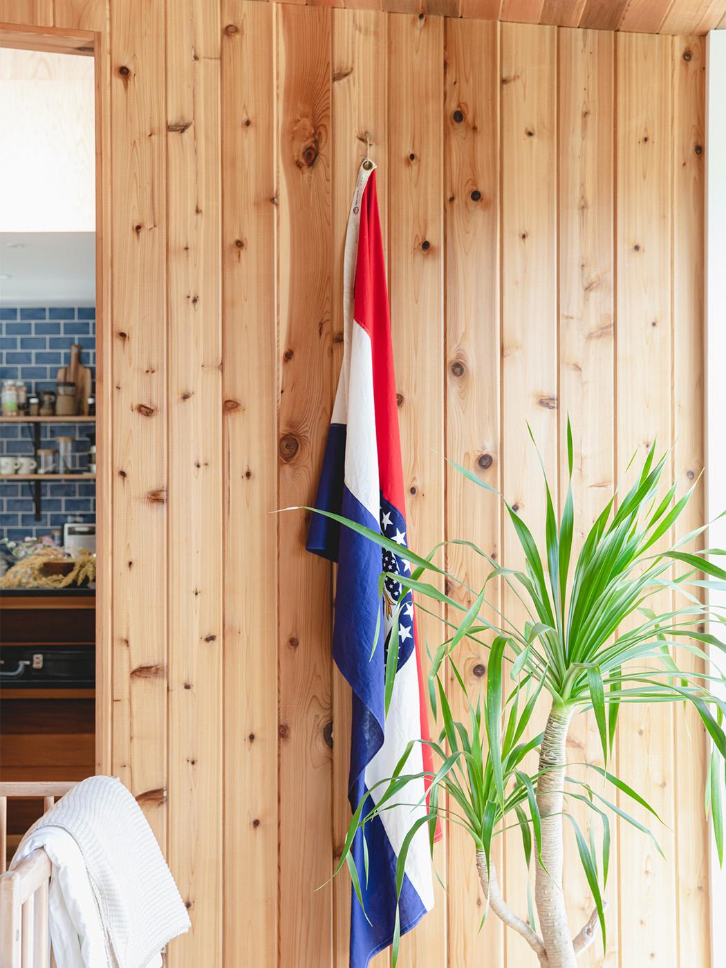 ラフな質感のウエスタンレッドシダーの壁と天井、大きな観葉植物もアクセントに。