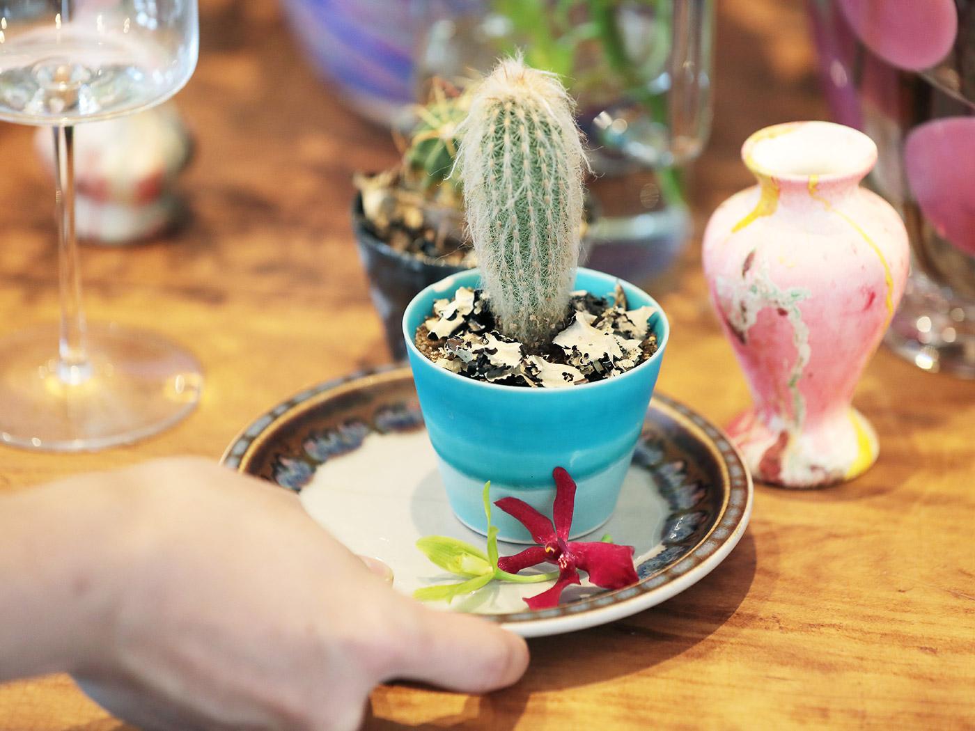 そば猪口は小さ目の植物の鉢植えにもぴったりな大きさ。
