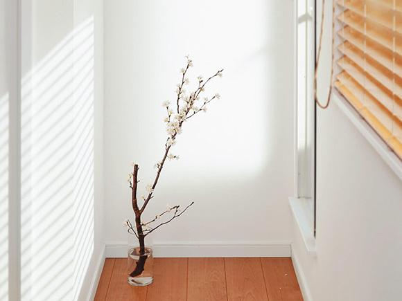 さりげなく季節を意識した植物が、生活を豊かにします。