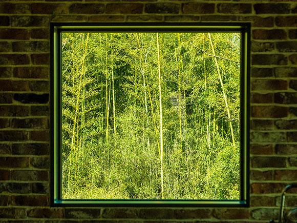 借景空間の窓