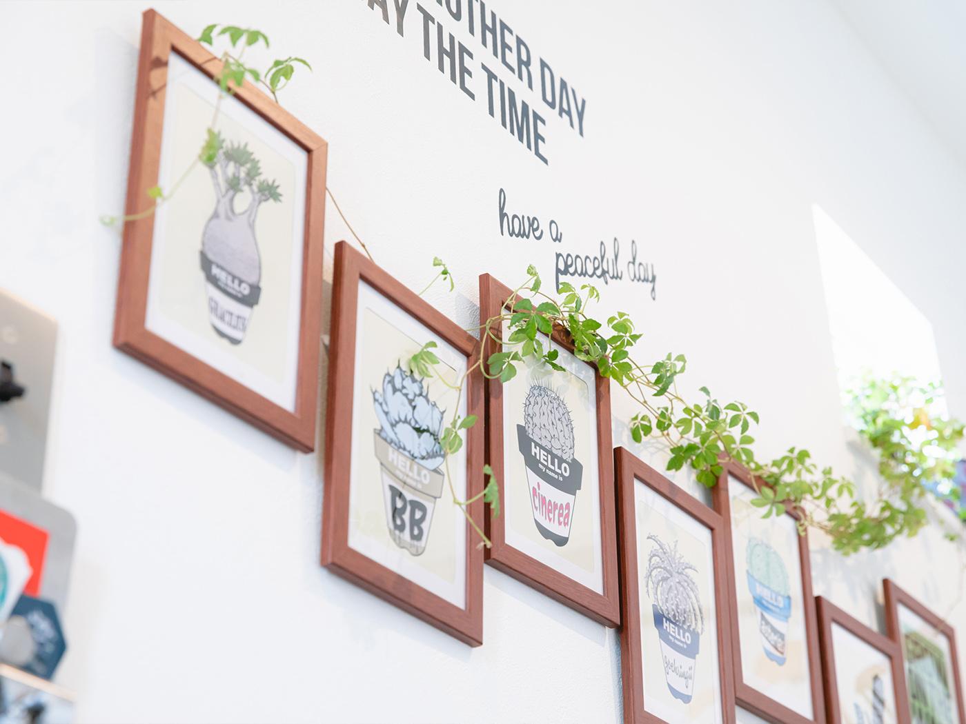 玄関には、「BASE」で購入した塊根植物のイラストが整列。